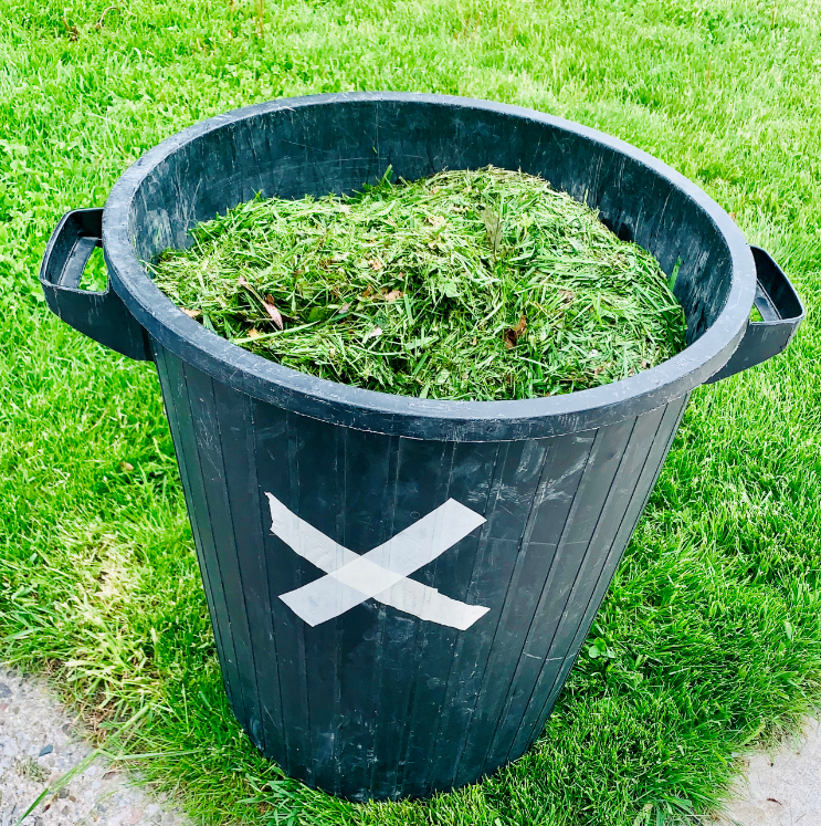Waste, Brush, Compost and Christmas Tree Collection – City ...